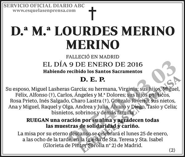 M.ª Lourdes Merino Merino